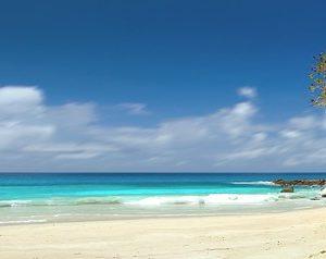 Conseils pour vos voyages aux Seychelles